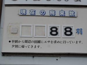 Dscn7218